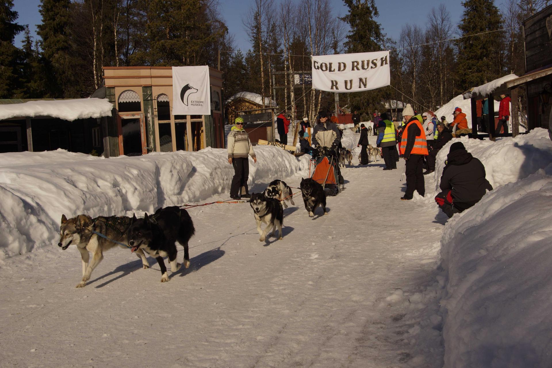 Gold Rush Run Gold Rush Run Visit Sompio