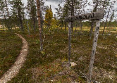 Three ways to experience Urho Kekkonen National Park