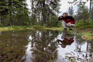 Sompio Nature Reserve National Park Puolivälin Lähde Visit Sompio