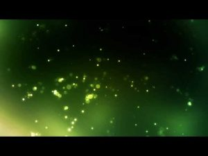 Amazonswamp Free Video Background Loops Hd P